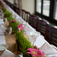Reception, Flowers & Decor, pink, green, Flowers, Sarah tew photography