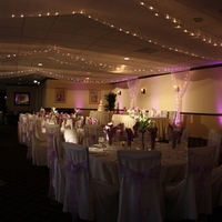 Reception, Flowers & Decor, purple, Lights, Pinspots, Ambiance, Ideal lighting and sound, Uplightings