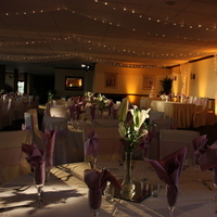 Reception, Flowers & Decor, Lighting, Pinspot, Amber, Uplight, Ideal lighting and sound