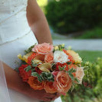 Flowers & Decor, orange, green, Flowers