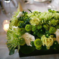 Flowers & Decor, green, brown, Centerpieces, Flowers, Centerpiece, Bella blooms