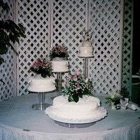 Reception, Flowers & Decor, Cakes, pink, cake, Flowers, Rocha floral design