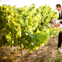 Ceremony, Inspiration, Reception, Flowers & Decor, Wedding Dresses, Romantic Wedding Dresses, Fashion, white, green, dress, Ceremony Flowers, Vineyard, Outdoor, Flowers, Vineyard Wedding Flowers & Decor, Romantic, Board, Banquet, Winery, California, Romance, Wine, Indoor, Robles, Paso, Vina robles winery, Vina, Flower Wedding Dresses