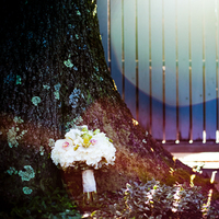 Flowers & Decor, Bride Bouquets, Flowers, Bouquet, Sunflare, Growing tree photography