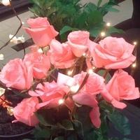 Flowers & Decor, Lighting, Flowers, Flower, Branch, Light, Lighted, Led, Bella aeris