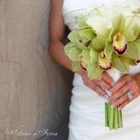Flowers & Decor, white, green, Bride Bouquets, Flowers, Bouquet, Orchid, Calla, Lily, Good earth floral design studio