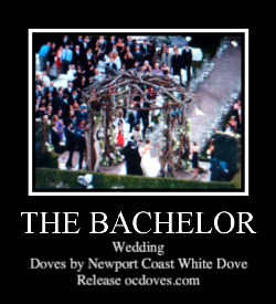 Wedding, Bachelor, The, Newport coast white dove release llc, Wwwocdovescom