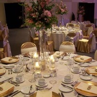 Reception, Flowers & Decor, Registry, ivory, pink, gold, Centerpieces, Place Settings, Centerpiece, Linens, Charger, Plate, Watkins event decor
