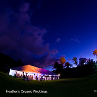 Reception, Flowers & Decor, Destinations, yellow, orange, blue, green, Hawaii, Lighting, Outdoor, Wedding, And, Tent, Design, Seattle organic weddings