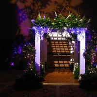 Ceremony, Reception, Flowers & Decor, Decor, pink, purple, green, Ceremony Flowers, Flowers, Wedding, Entrance, Arbor, An octopuss garden floral design studio