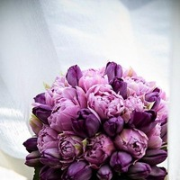 purple, Bride Bouquets, Bridesmaid Bouquets