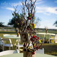 Reception, Flowers & Decor, red, brown, Centerpieces, Rustic, Flowers, Rustic Wedding Flowers & Decor, Centerpiece, Wedding, Catie ronquillo photographer