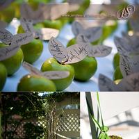 Reception, Flowers & Decor, green, brown, Centerpieces, Apples, Details, Jen stewart photography