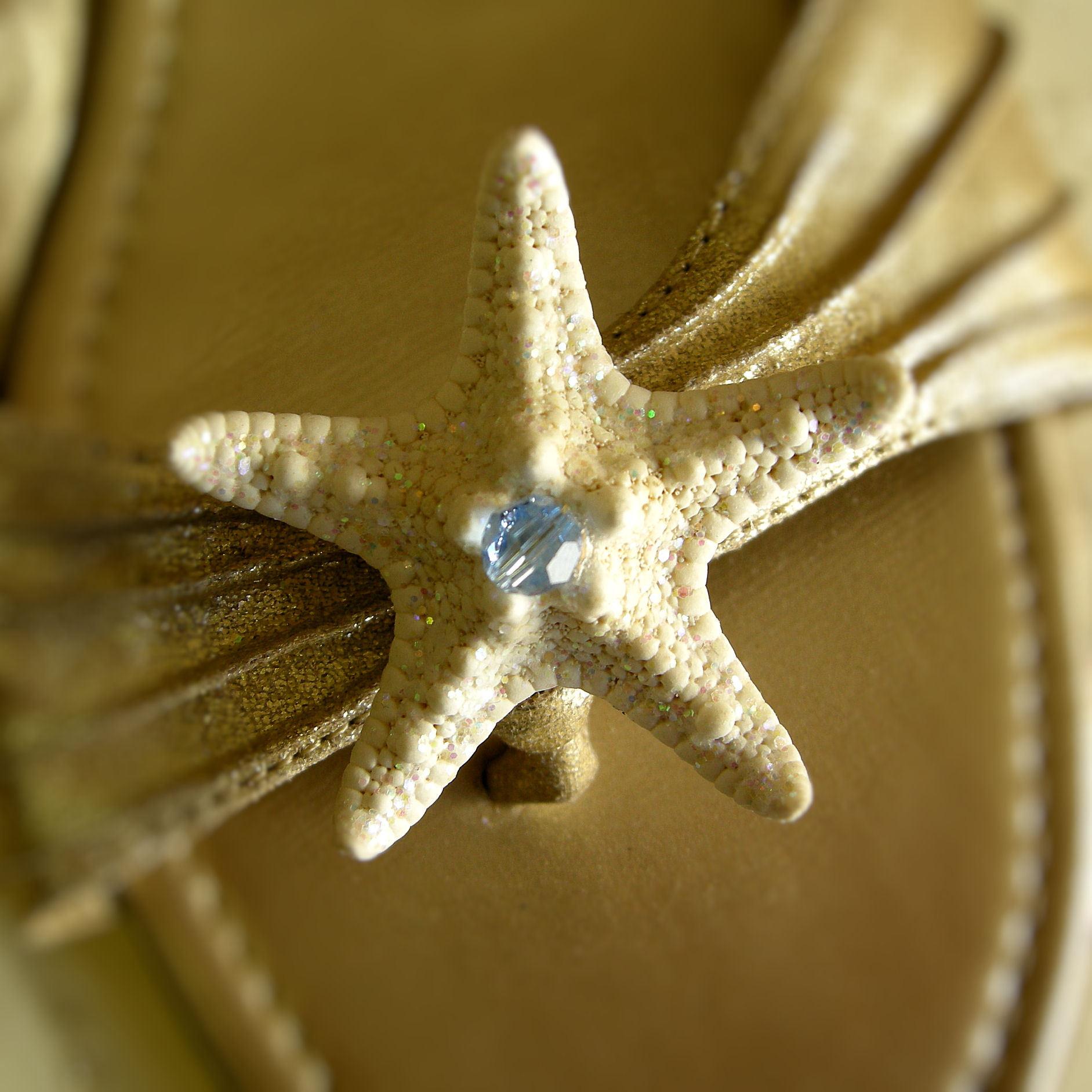 Wedding Dresses, Shoes, Fashion, blue, dress, Shoe, Something, Clips, Shellscapes