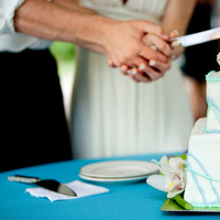 Reception, Flowers & Decor, Cakes, white, pink, blue, cake, Cake cutting, Knife, Holding hands, Wedlock images