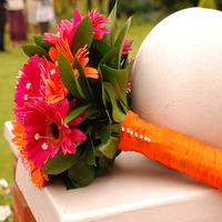 Flowers & Decor, orange, pink, Flowers