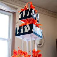Flowers & Decor, Cakes, white, orange, black, cake, Square Wedding Cakes, Square, Flower, Floral, Tall, Lily, Tier, Large, Tiger, Zebra, Jennifer hallberg cakes for all occasions