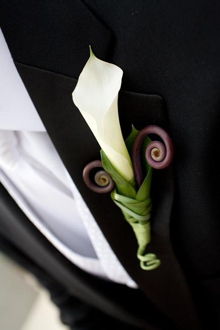 Flowers & Decor, brown, black, Boutonnieres, Flowers, Boutonniere, Tail, Monkey, Trisha dean events