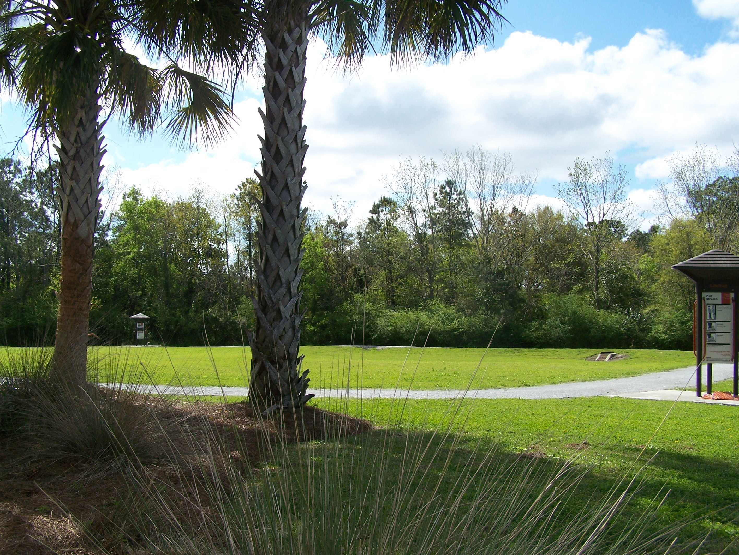 Outdoor, Natural, Space, Lowcountry senior center