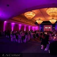 Ceremony, Inspiration, Reception, Flowers & Decor, white, yellow, orange, pink, red, purple, blue, green, brown, black, silver, gold, Lighting, Board, Up, Color, Light, Led, Change, Up-light, La color