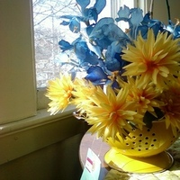 Flowers & Decor, Registry, yellow, blue, Centerpieces, Kitchen, Kitchen Appliances, Flowers, Centerpiece, Bright, Martha, Stewart, Iris, Collander