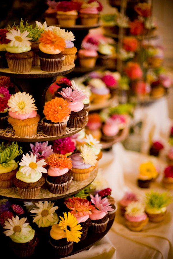 Cakes, white, yellow, orange, pink, red, purple, blue, green, brown, cake, Cupcakes, J e bock photography