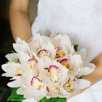 Flowers & Decor, white, pink, Bride Bouquets, Flowers, Bouquet, Orchid, Cherry tree occasions