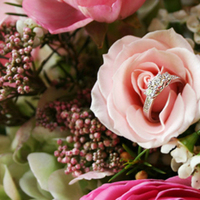 Flowers & Decor, Jewelry, white, pink, green, Flowers, Dianne personett photography