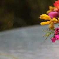 Flowers & Decor, pink, Flowers, Fujikos flowers