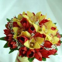 Flowers & Decor, white, yellow, orange, pink, green, Flowers