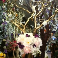 Reception, Flowers & Decor, Centerpieces, Centerpiece, Tree, Manzanita