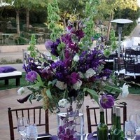 Flowers & Decor, purple, green, silver, Centerpieces, Flowers, Centerpiece, Orchids, Grapes