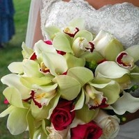 Flowers & Decor, white, green, Bride Bouquets, Flowers, Bouquet, Orchids