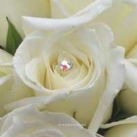 Ceremony, Inspiration, Reception, Flowers & Decor, Jewelry, white, yellow, silver, Ceremony Flowers, Flowers, Board