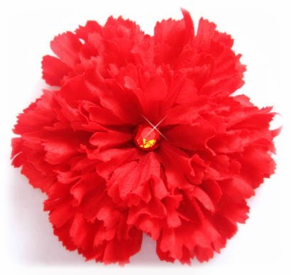 Beauty, Flowers & Decor, red, Flowers, Flower, Hair, Carnation, Color, Bead