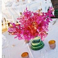 Flowers & Decor, orange, pink, purple, Flowers