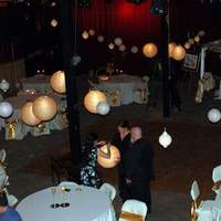 DIY, Reception, Flowers & Decor, pink, Music, Spotlight, Uplighting, Paper lantern