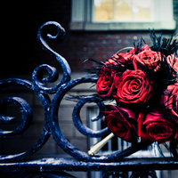 Flowers & Decor, red, black, gold, Flowers