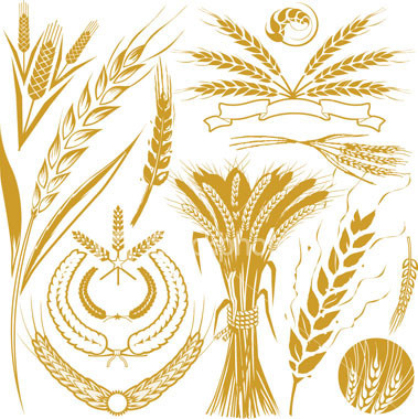 Stationery, Invitations, Designs, Wheat