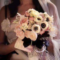 Flowers & Decor, white, pink, black, Flowers, Peonies, Reneculas