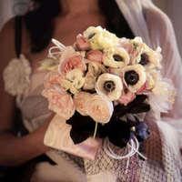 Flowers & Decor, white, pink, black, Flowers, Peonies, Reneculas