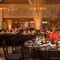 Reception, Flowers & Decor, Decor, pink, red, brown, Centerpieces, Flowers, Centerpiece, Orchids