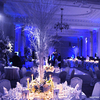 Reception, Flowers & Decor, white, blue, silver, Lighting, Flowers