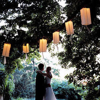 Reception, Flowers & Decor, Lanterns, Garden wedding, Backyard wedding
