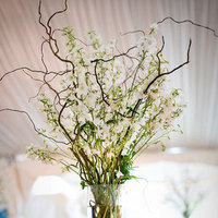 Reception, Flowers & Decor, Centerpieces, Branch