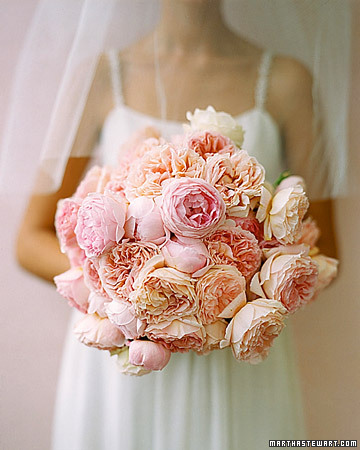 Flowers & Decor, pink, Flowers, Cabbage roses