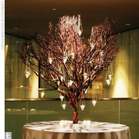 Reception, Flowers & Decor, white, brown, Centerpieces, Centerpiece