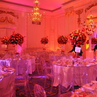 Reception, Flowers & Decor, pink, red, purple, gold, Lighting, Flowers