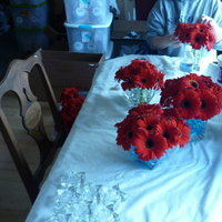 DIY, Flowers & Decor, white, red, blue, Flowers