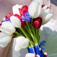 Flowers & Decor, white, red, blue, Flowers